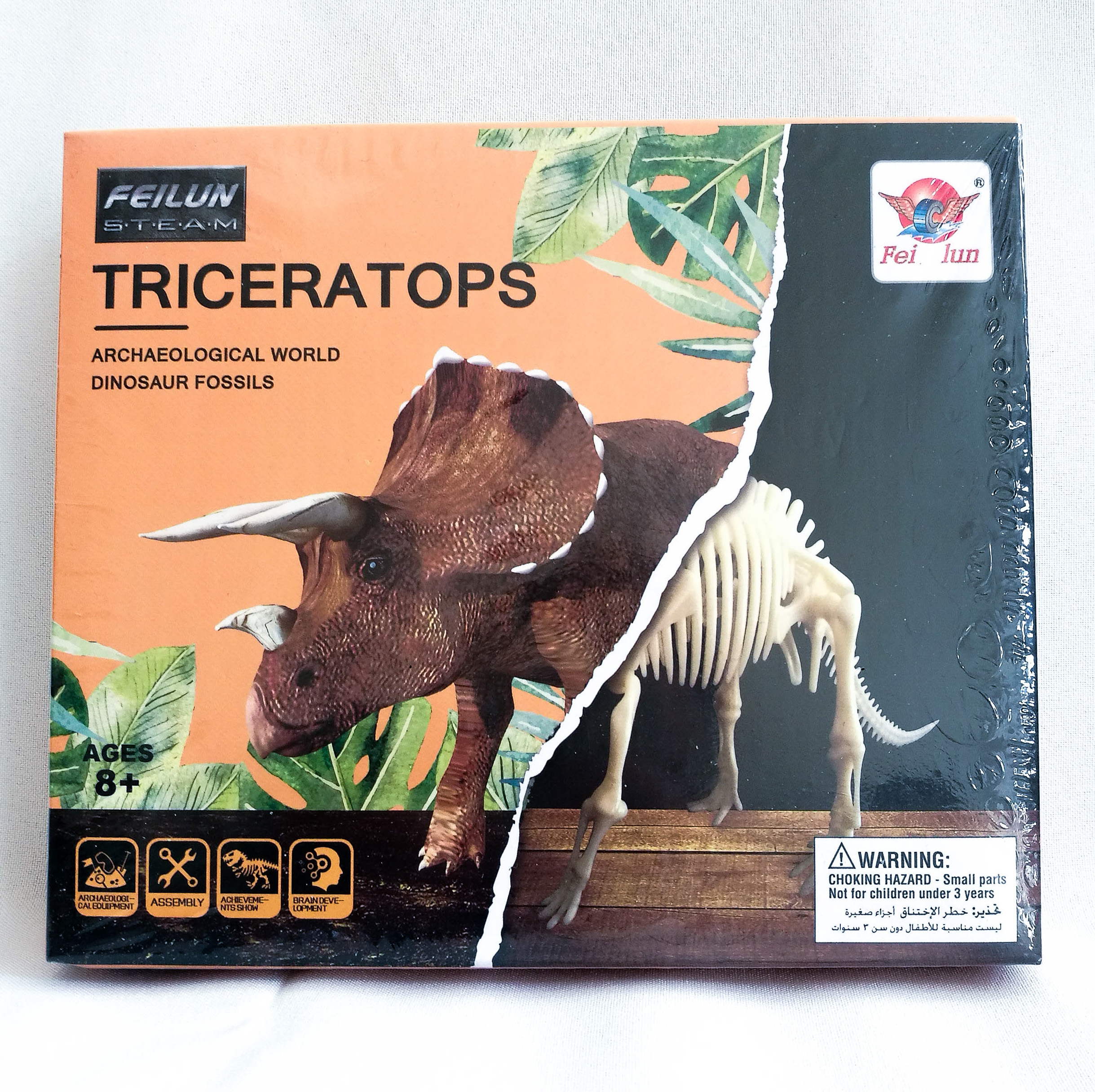Triceratops - Archaelogical World Dinosaur Fossil